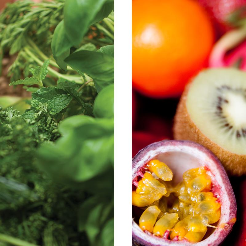 Spiros - Sports Nutrition Menus