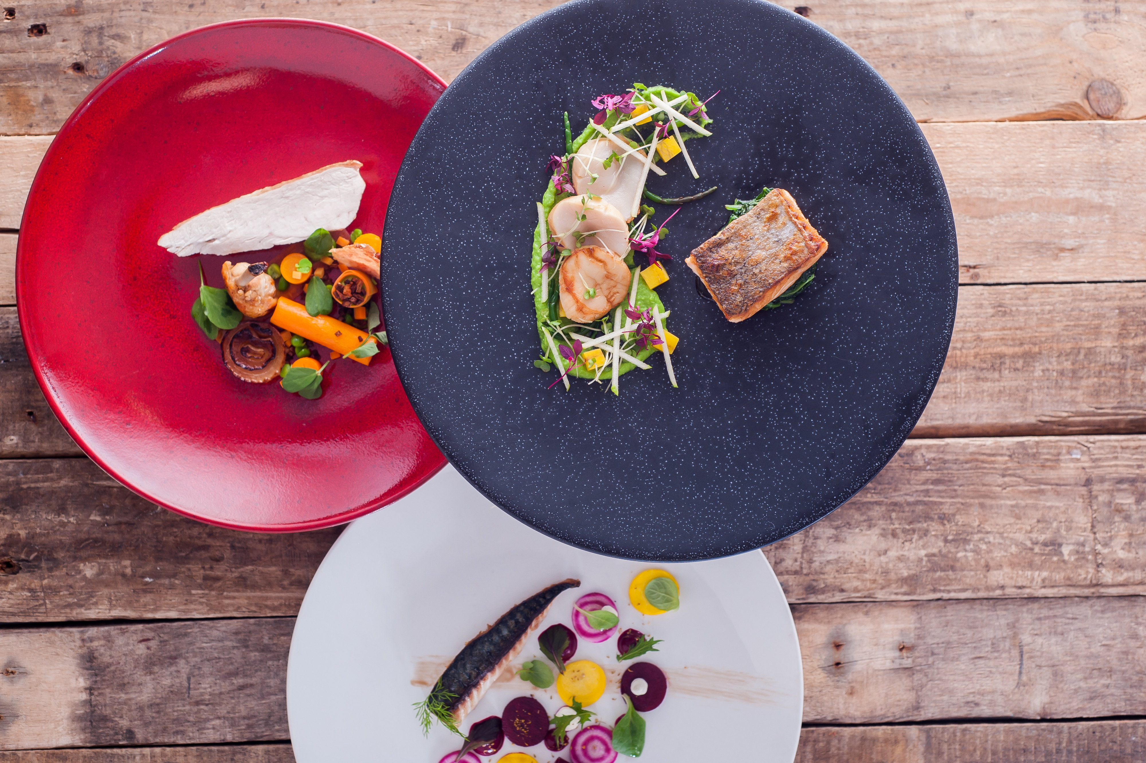 10 Top Tips: How to Present Food Like a Professional Chef